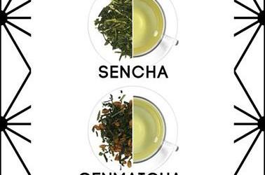 Rodzaje i kolory zielonej herbaty