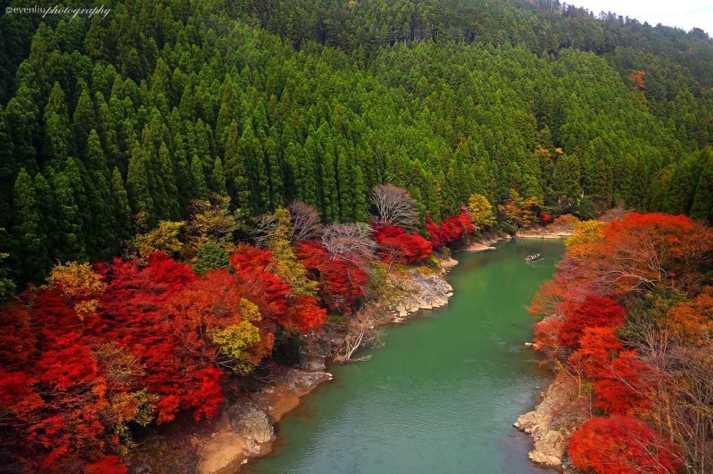 arashiyama_kyoto_by_evenliu-d5m7ygi