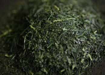 Sencha(煎茶) ・Fukamushicha (深蒸し茶)