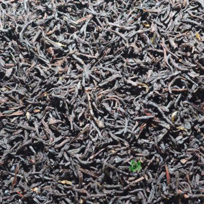 Czarna herbata Earl Grey Premium, Czarna herbata Earl Grey Premium, czarne herbaty, herbaty czarne, dobre czarne herbaty, pyszna herbata, mocna herbata, dobra herbata