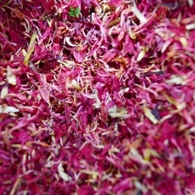 Chaber Kwiat bławatka różowego 001384 (3)
