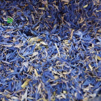 zioła Chaber kwiat bławatka niebieskiego